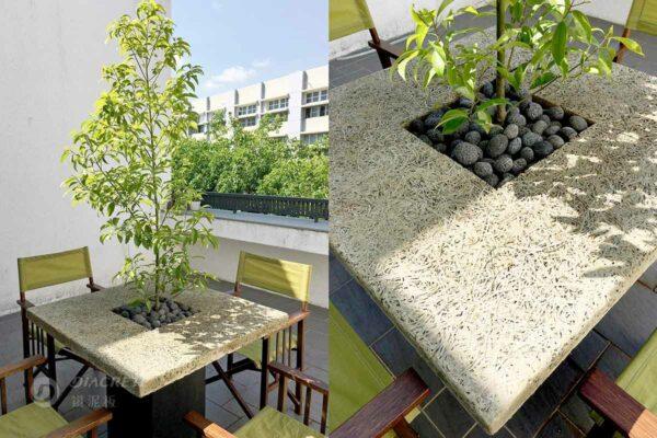桌中樹成為陽台最搶眼的存在,擺在戶外日曬雨淋也不怕發霉長蟲,足夠用上好幾年。
