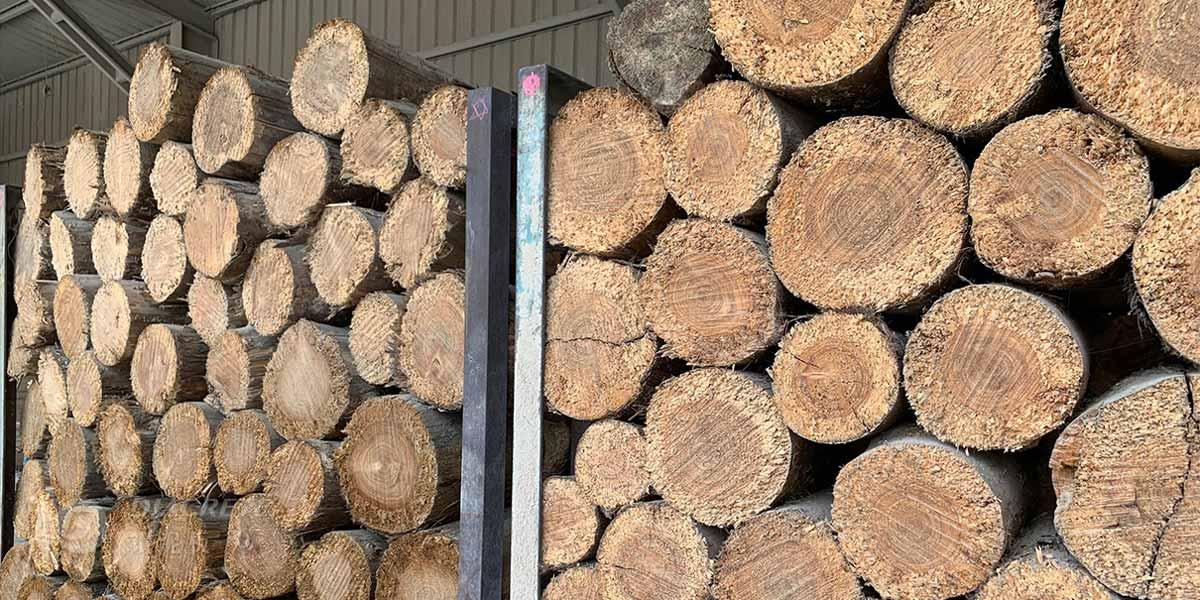 2020年鑽泥板全面採用國產疏伐木材,主要使用台灣杉作為木絲原料。