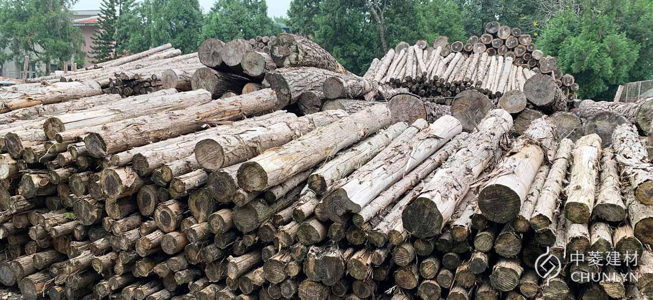 中菱幫助消耗一般木業、家具業難以使用的「小直徑木材」,支持台灣森林疏伐作業。